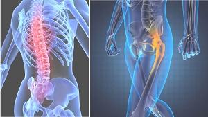 «АртроМедЦентр» – клиника, где можно вылечить суставы и позвоночник